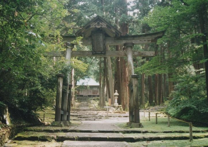 woodshrine